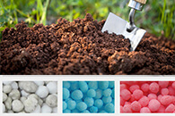 How To Apply Compound Fertilizer?