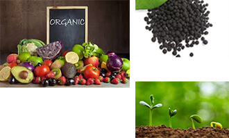 The difference between organic fertilizer, inorganic fertilizer and biological fertilizer(一)