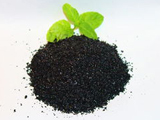 Humic acid + fertilizer